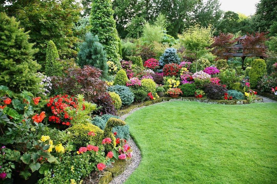 Ландшафт в саду фото